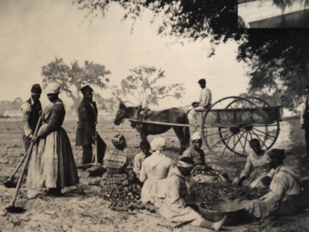 African Slaves in the South