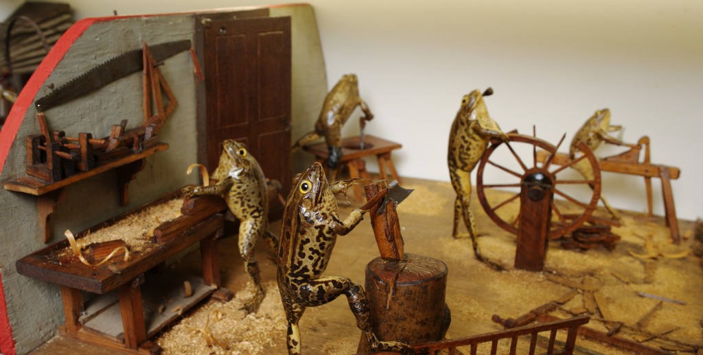 Carpenter frogs hard at work | © Froggyland