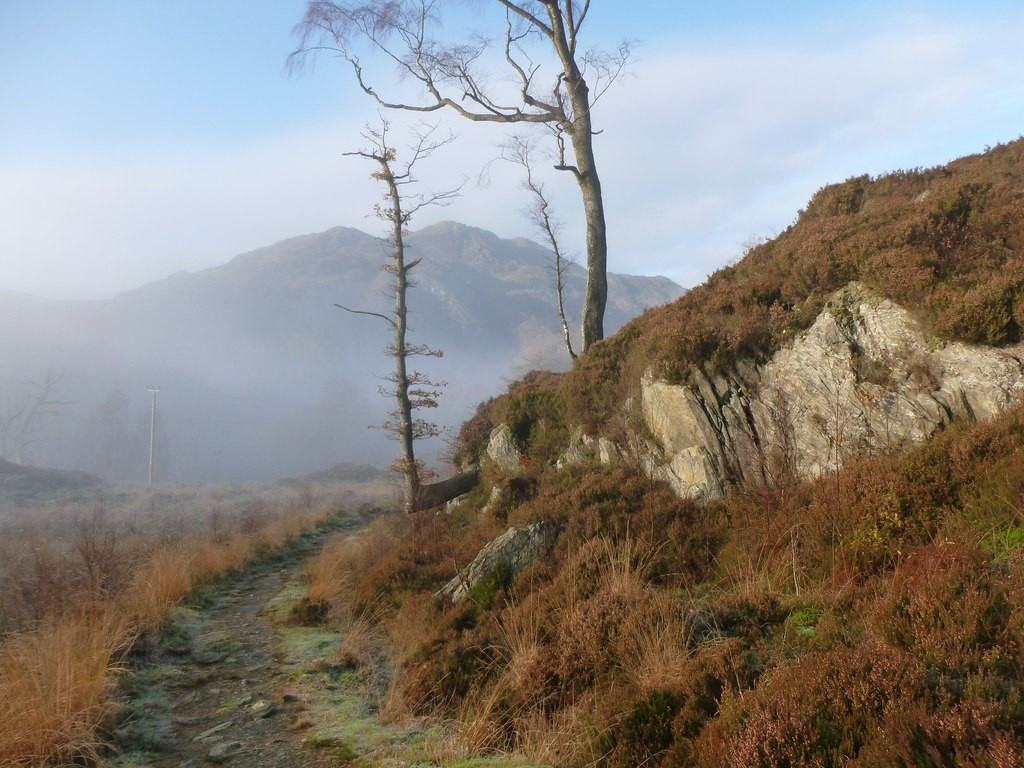 The Great Trossachs Path | © Alan O'Dowd / Geograph