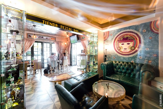 Top 8 Quirky Boutique Hotels In Condesa Roma Mexico City