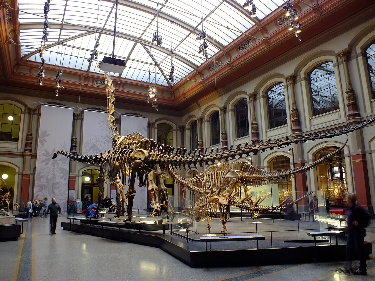 The Top 10 Museums to ...