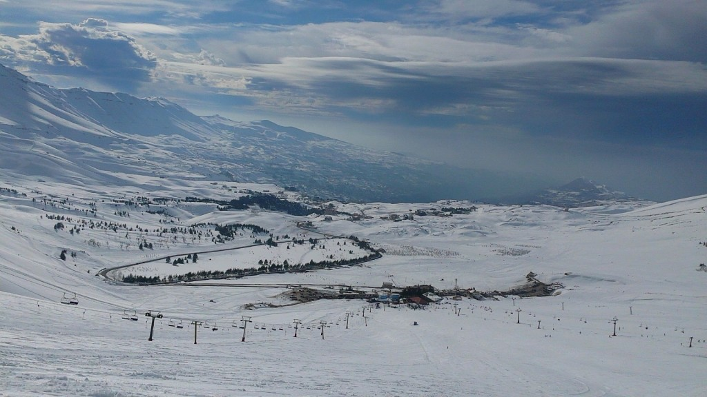 Cedars, View from the Top © Amani El Charif