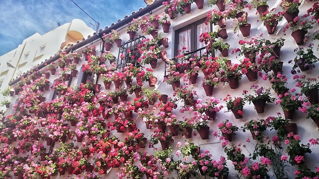 A patio in Córdoba, Spain | © Lori Zaino