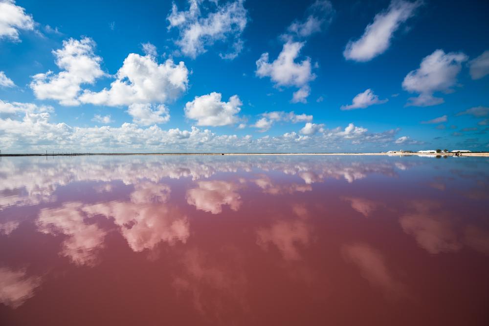 The Pink Salt Lakes of Las Coloradas, Yucatán