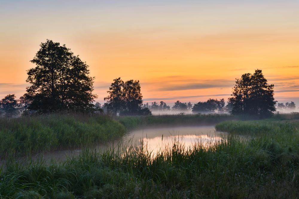 Views at Matsalu| ©UrmasHaljaste/Shutterstock