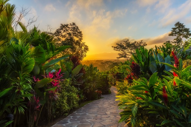 why costa rica is the world u0026 39 s happiest country