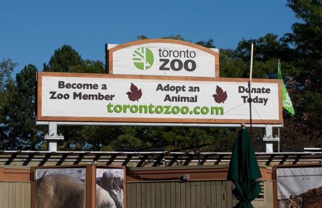 Toronto Zoo   © Pat & Keri/ Flickr