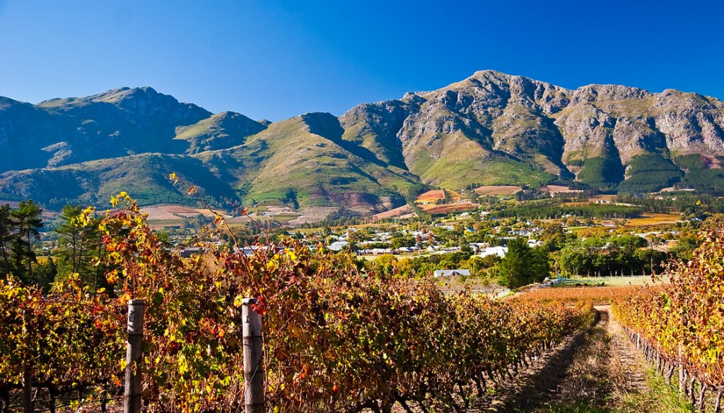 View of the Stellenbosch Mountains, from the vineyards surrounding WedgeView Country House & Spa | ©John Hickey-Fry/Flickr