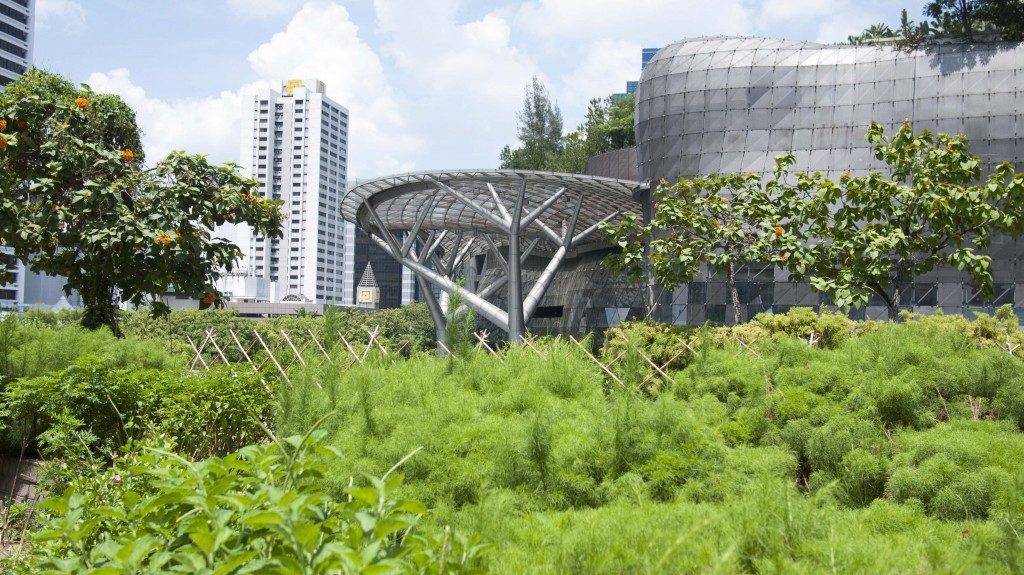 Step into The Future of Gardening at Singapore's Edible ...
