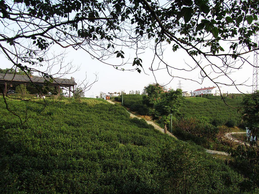 Zhenjiang | Courtesy of Wikimedia Commons
