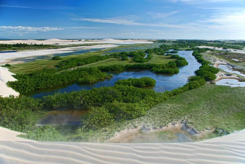 Protect the natural beauty in Jericoacoara / ©U L / Wikimedia Commons
