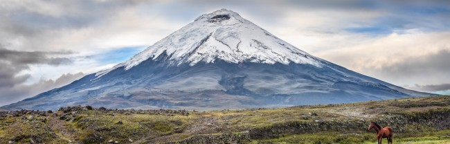 Mount Cotopaxi in the Andes. Alexander von Humboldt was the first European who tried to climb this mountain in1802. He reached a height of about 4500m as he had to return because of heavy snowfall.   © Simon Matzinger/Flickr