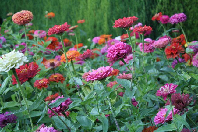 "<ahref=""https://www.flickr.com/photos/allisonfender/"">Granada's gardens and parks are particularly attractive in spring | © Allison Fender/Flickr</a>"