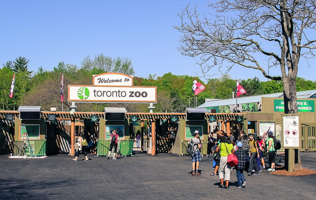 Toronto Zoo | © Norman Maddeaux / Flickr