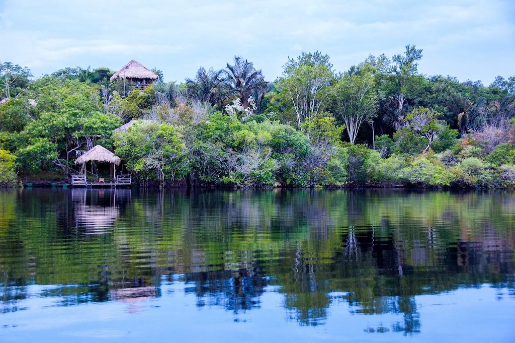 The Amazon / © Alessandro Malatesta / Flickr