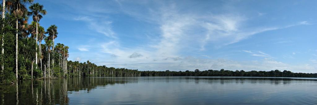 Lake Sandoval in Tambopata National Reserve|©Filipe Fortes/Flickr