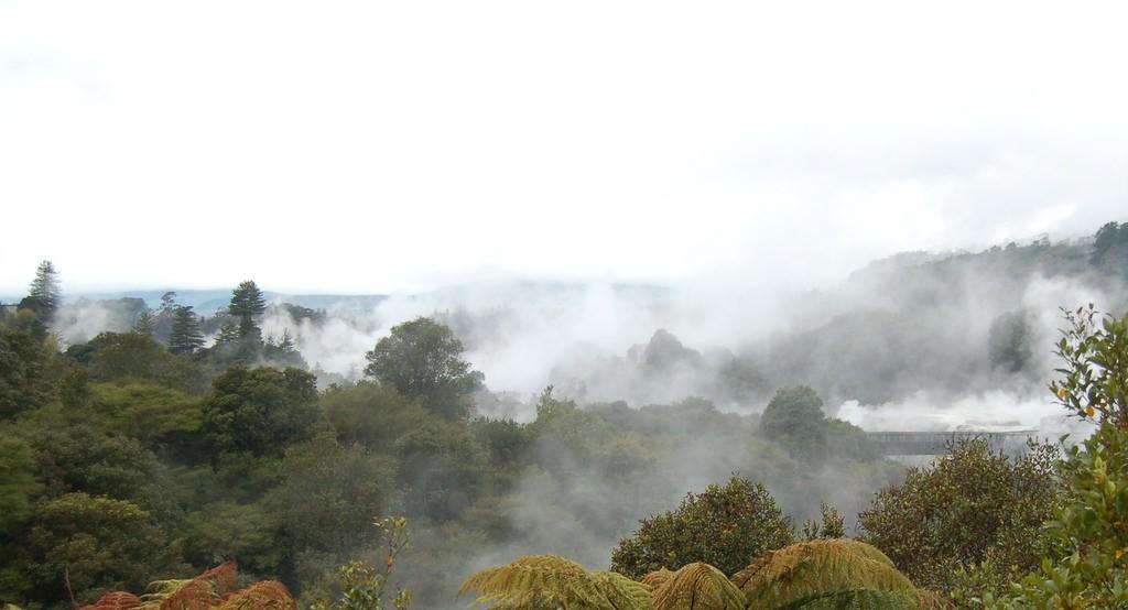 Rotorua Springs   © Scott Thompson/Flickr