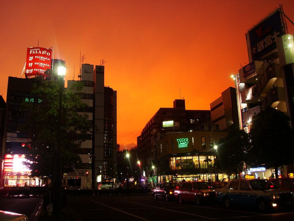 Outside Nishi Kasai Station   © greentleaf/Flickr