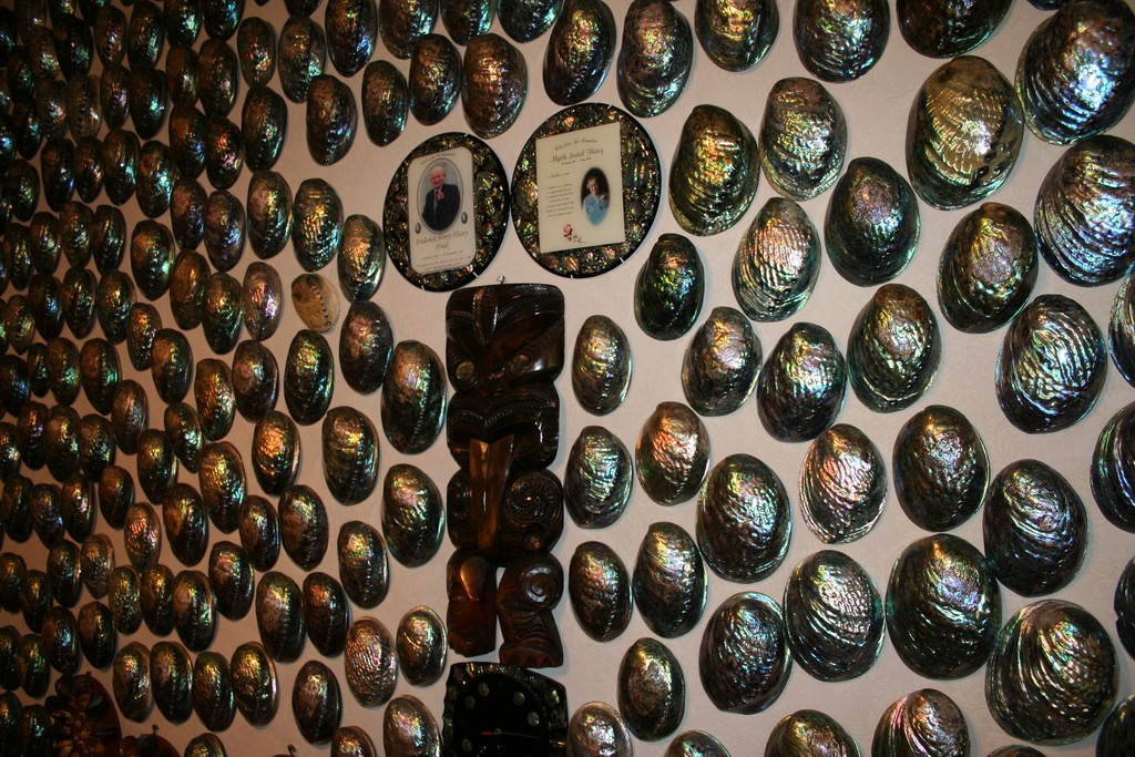 Paua Shells | © Big Blue Ocean/Flickr