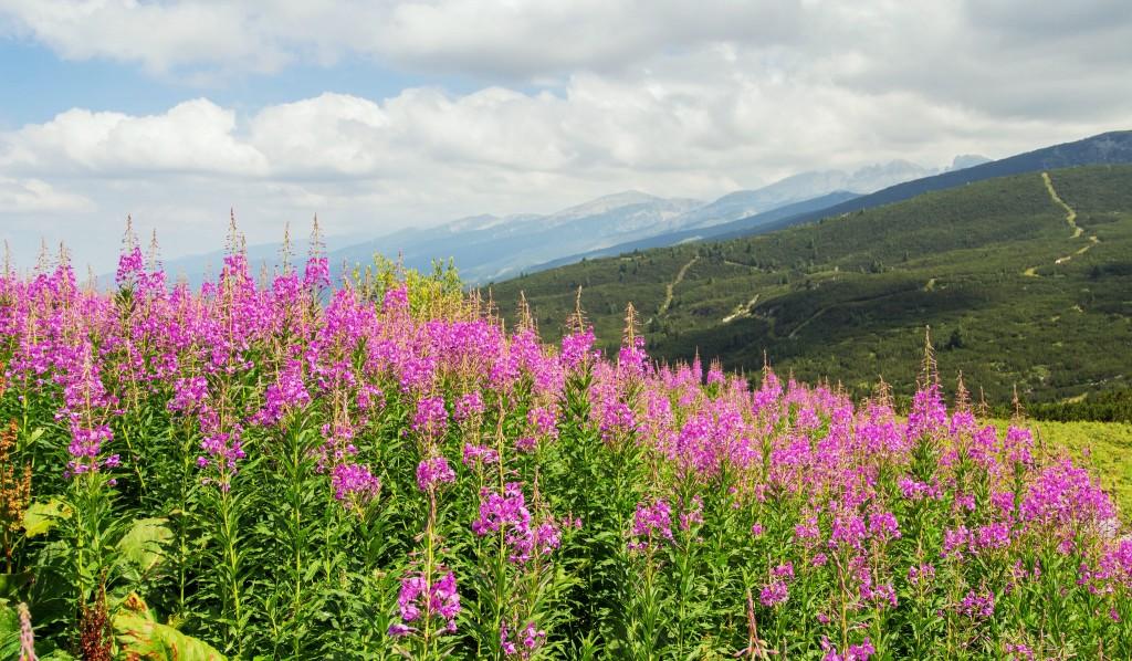 Rila Mountains | © Faces&&Places/Flickr