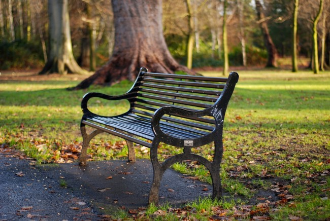 Park Bench at Ormeau Park | © Donna/ Flickr