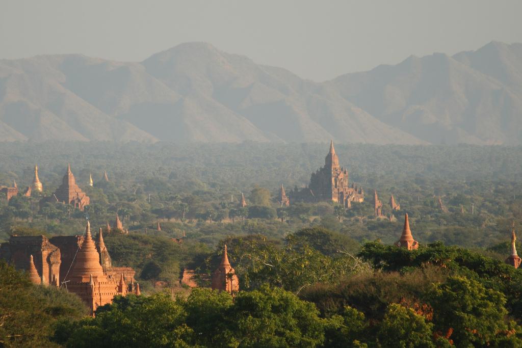 The temples of Bagan   © Ed Brambley
