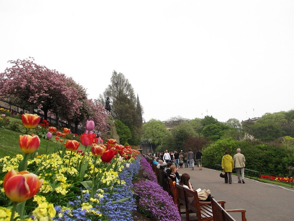 Princes St Gardens, Edinburgh   © Mari Smith/Flickr