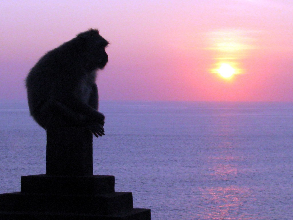 Sunset at Uluwatu Temple with monkeys | © Sue Waters/Flickr