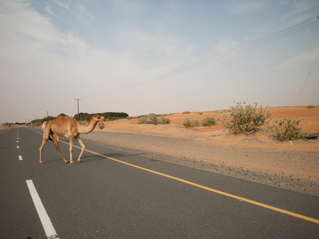 Dubai | © Tue S. Dissing/Flickr