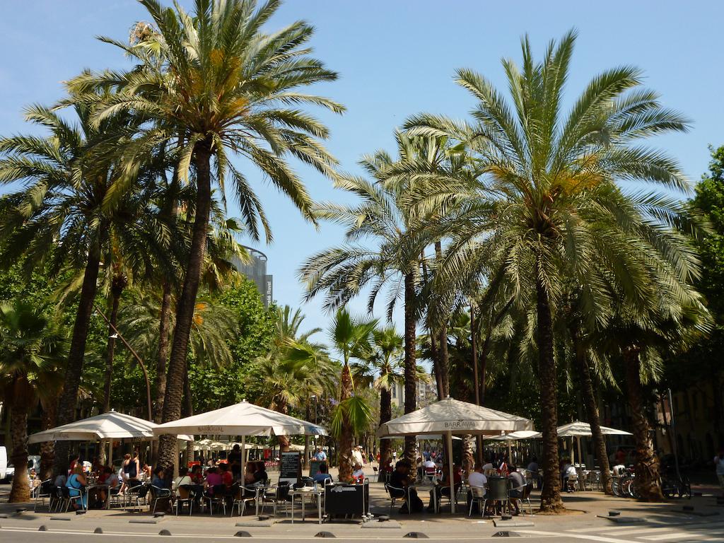 The view of the Rambla del Raval © Oh-Barcelona.com