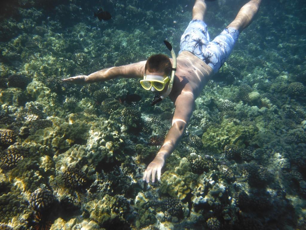 Snorkeling|©dancingnomad3/Flickr