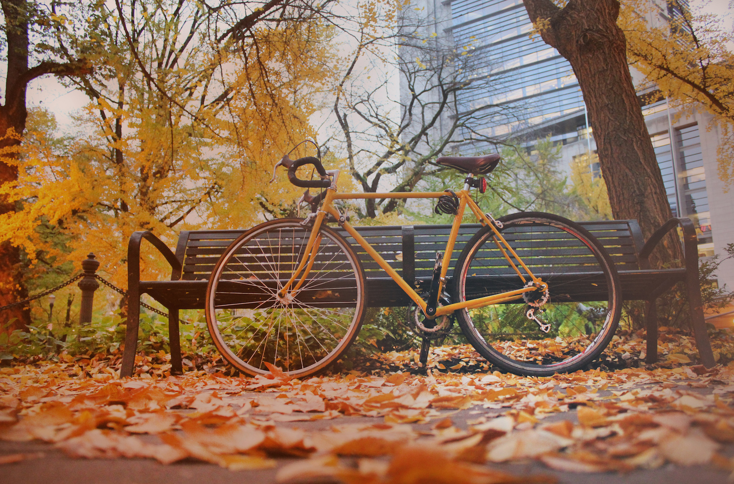 Bicycle in Portland, OR | © Jamie Tidwell/Flickr