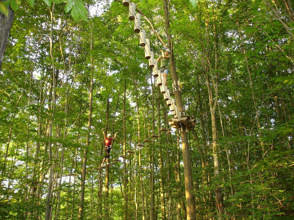 Trekking the Treetops in Barrie | © Robert Meeks / Flickr