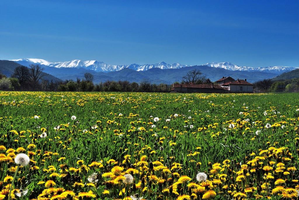 Central Balkan National Park | © Toli Nikolaev/WikiCommons