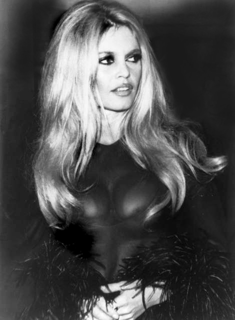 Brigitte Bardot made the dessert famous in the 1960s  © Michel Bernaunau/WikiCommons