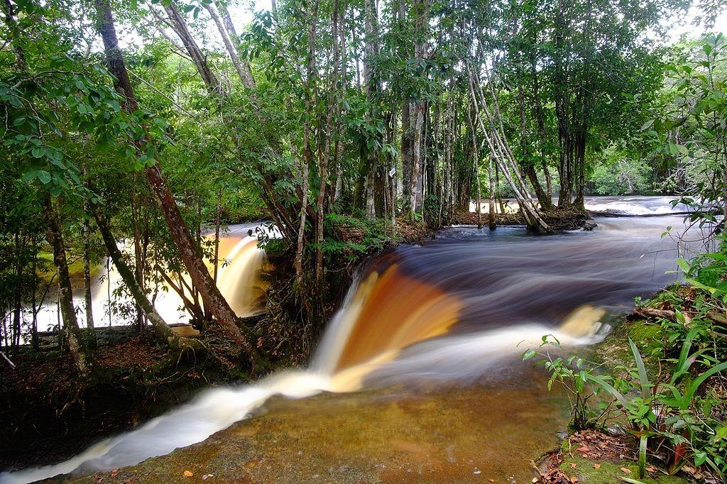 Cachoeira das Araras in Presidente Figueiredo / © Jardelsliumba / Wikimedia Commons