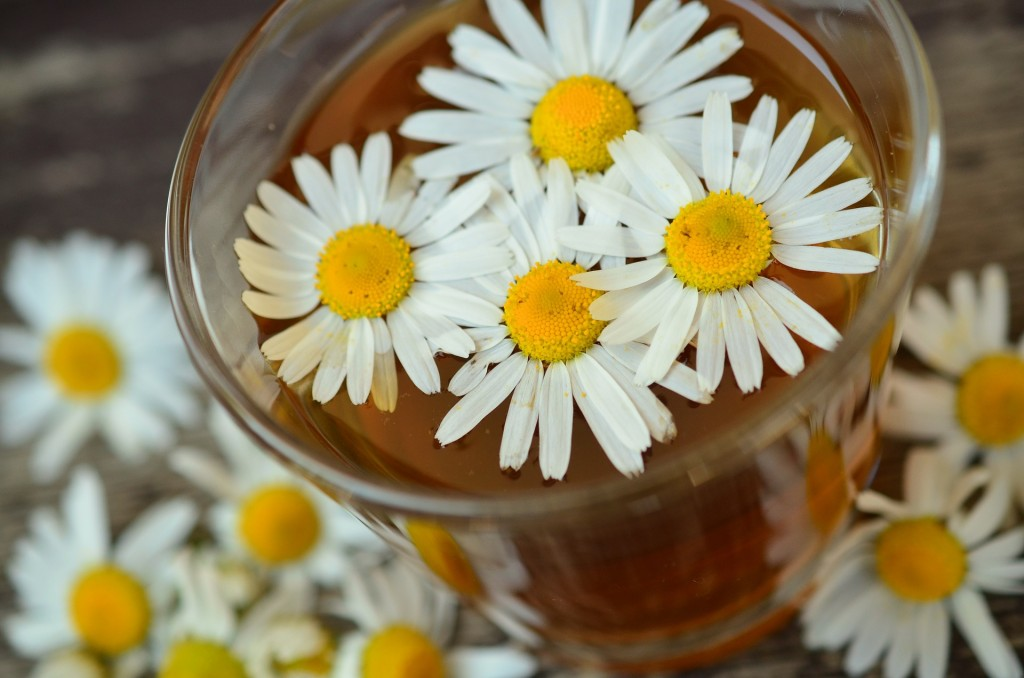 Chamomile for swollen eyes   © Pixabay