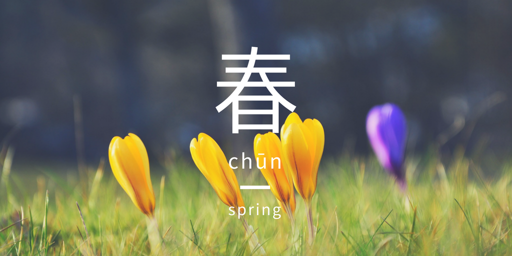 Spring crocuses blooming | Pixabay