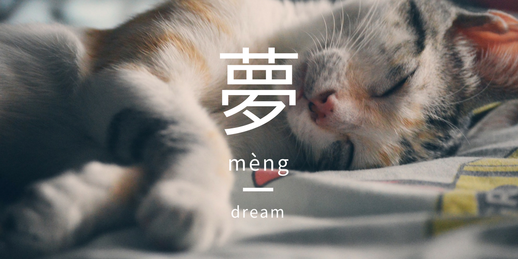 Sleeping kitten | Pexels