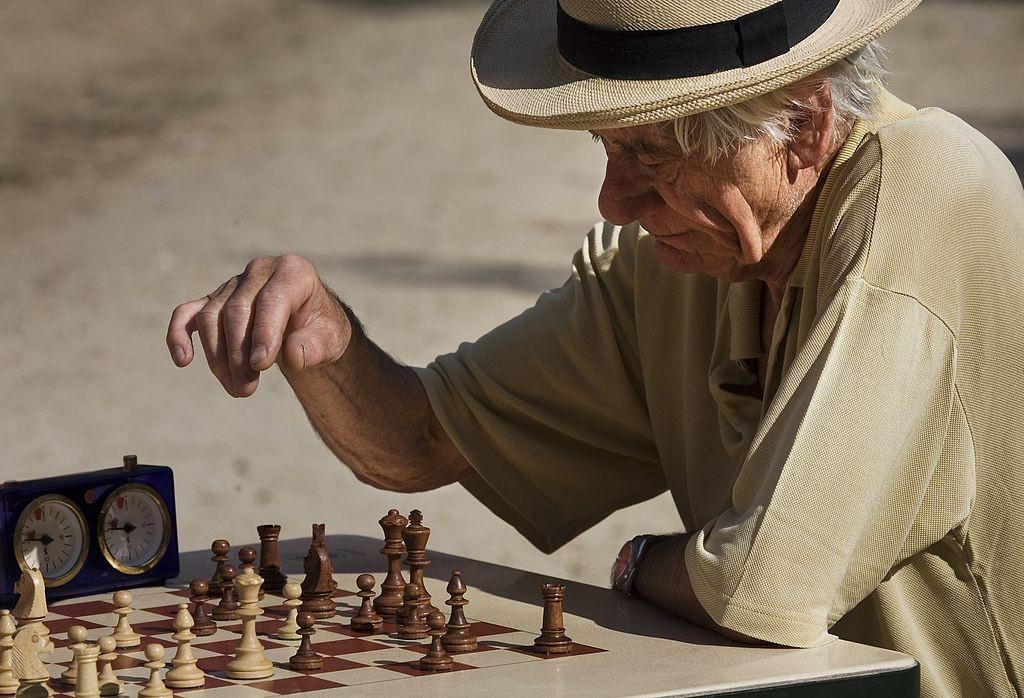 Chess player │© Jorge Royan / Wikimedia Commons