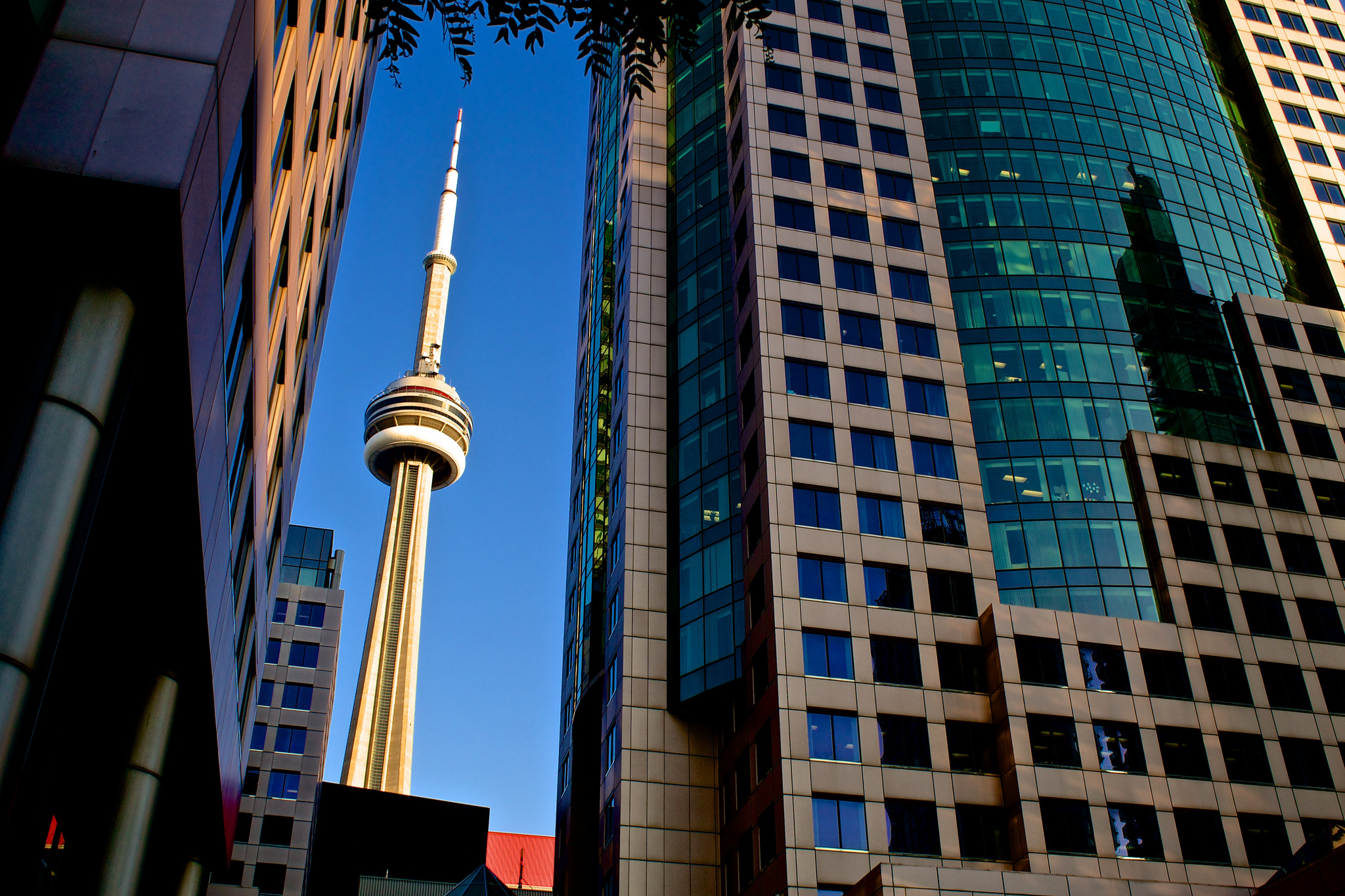 CN Tower, Toronto | © mark.watmough/ Flickr