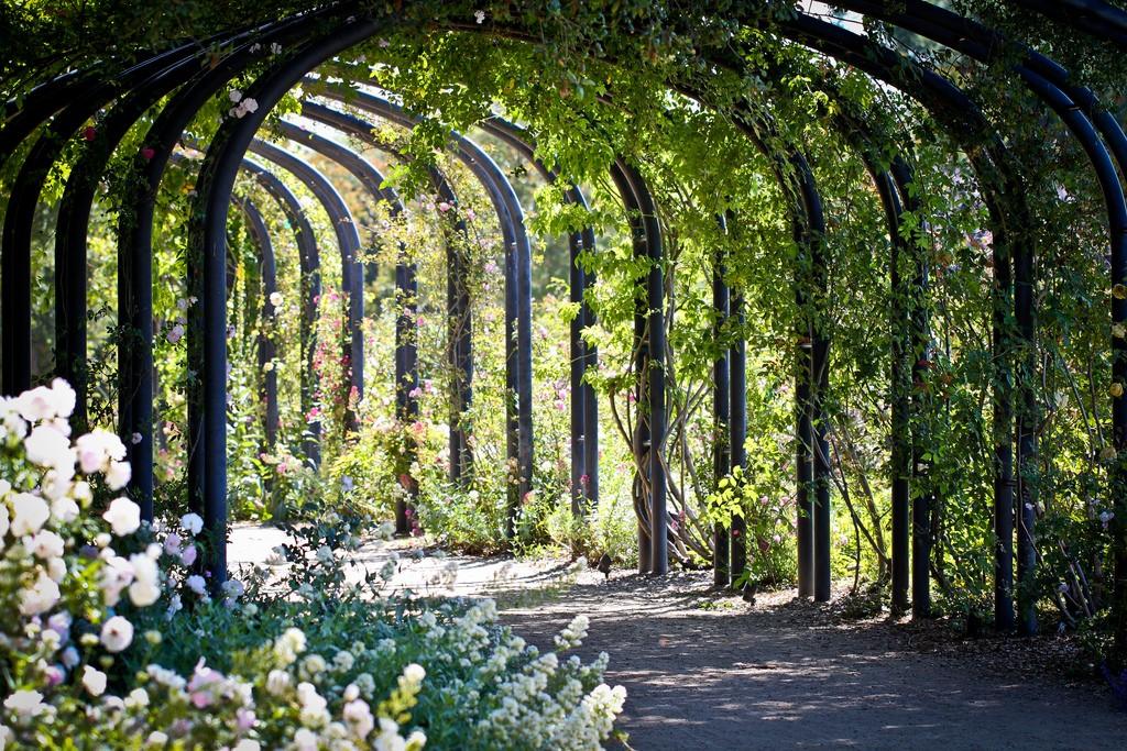 Descanso Gardens|©Brendan C/Flickr