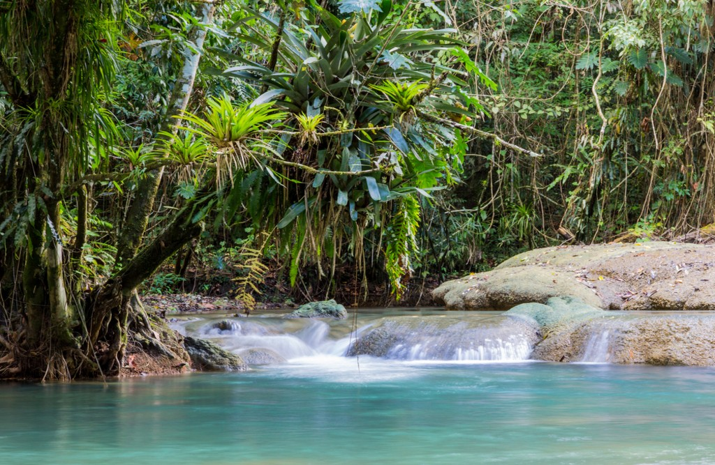 Y.S. Falls, Jamaica | © Sherry Talbot/Shutterstock