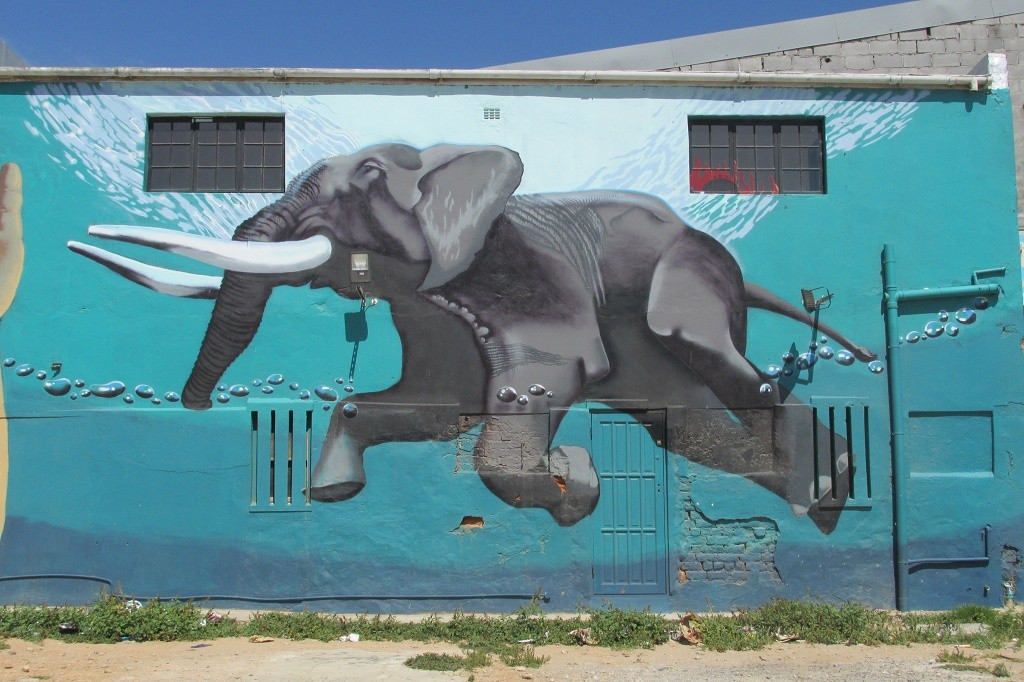 Swimming elephant © Lee-Shay Collison