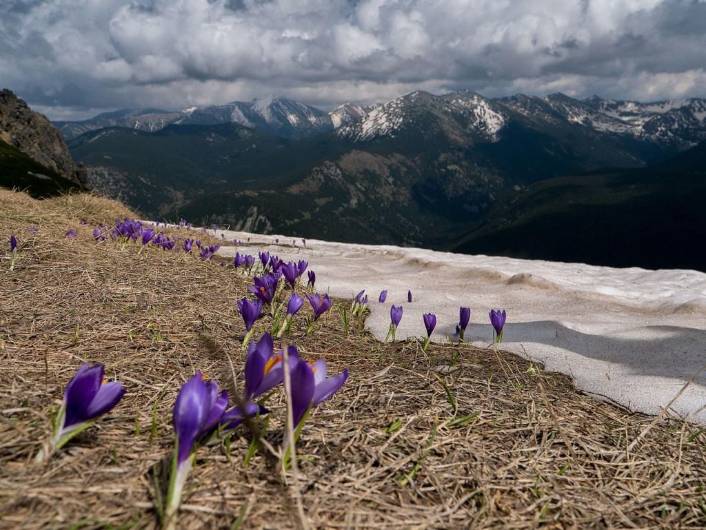 Rila Mountains |© Иван Стефанов Коев/WikiCommons