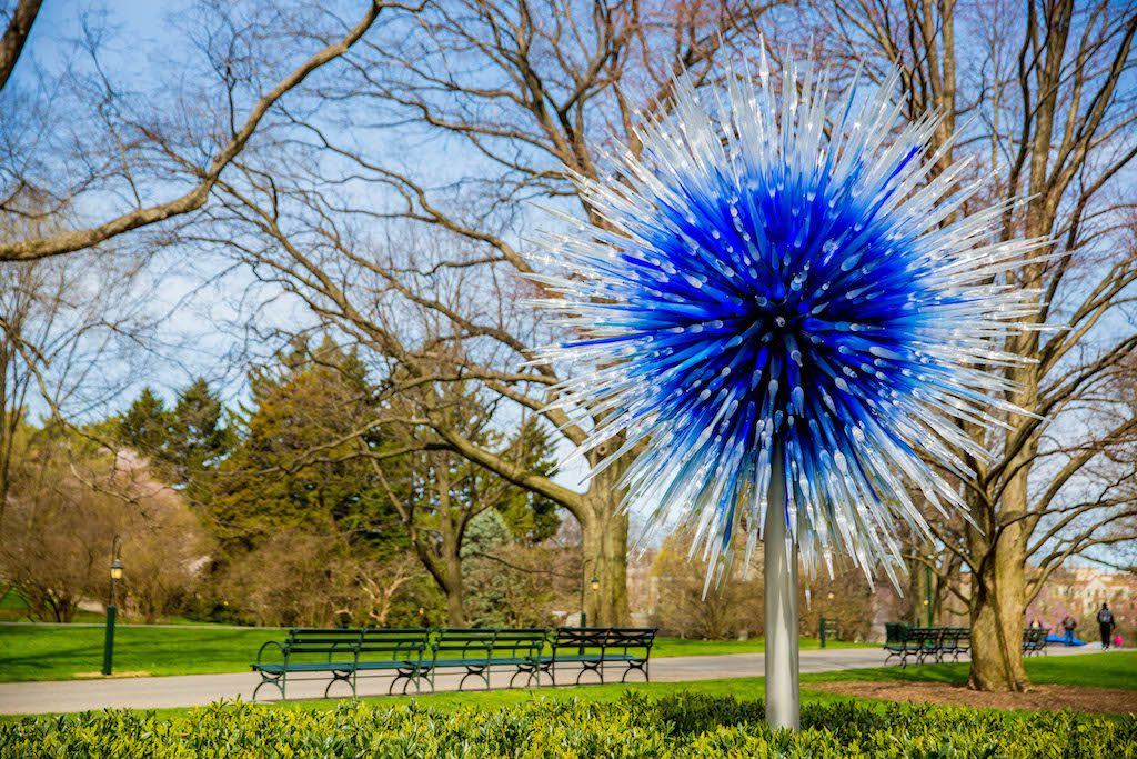Dale Chihuly, Sapphire Star, 2017, The New York Botanical Garden