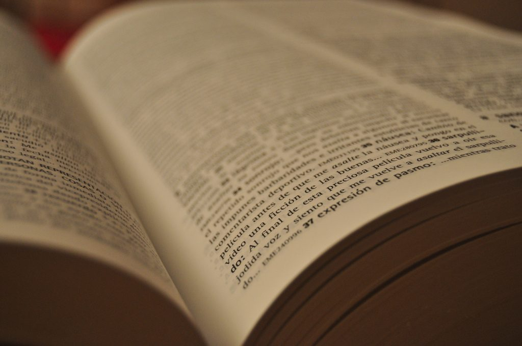 Pages of a Spanish dictionary | © Kalliop3 / Flickr