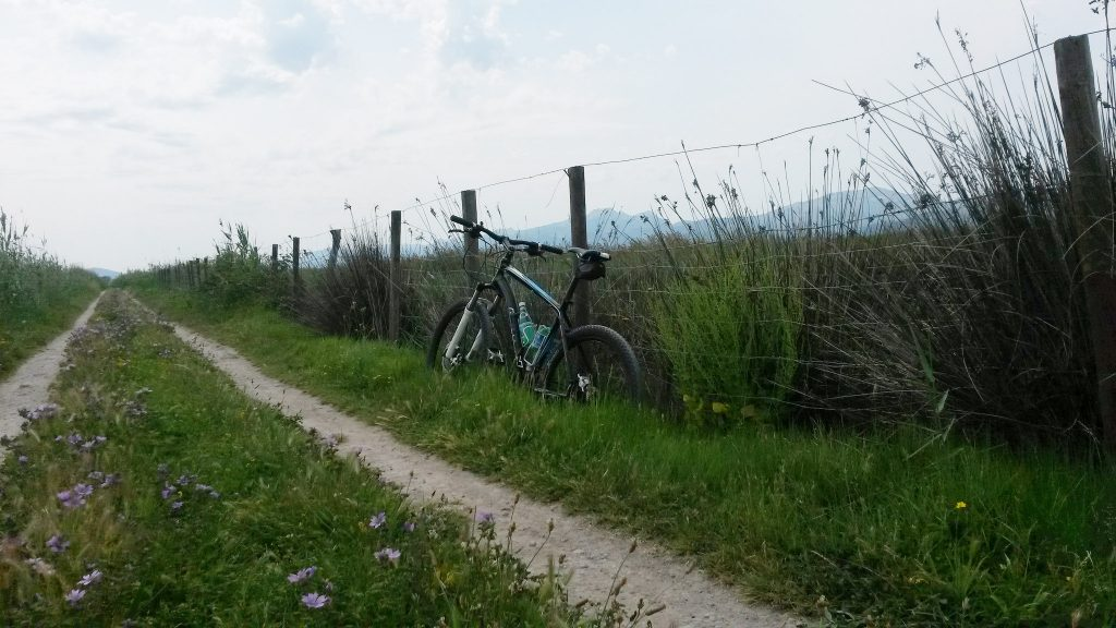 S'Albufera bike trail © List_84 / Flickr