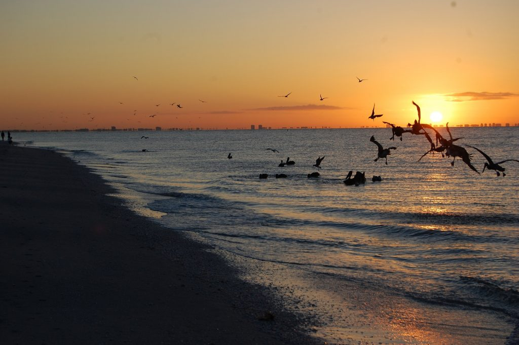Most beautiful places in northern florida for Most beautiful cities in florida