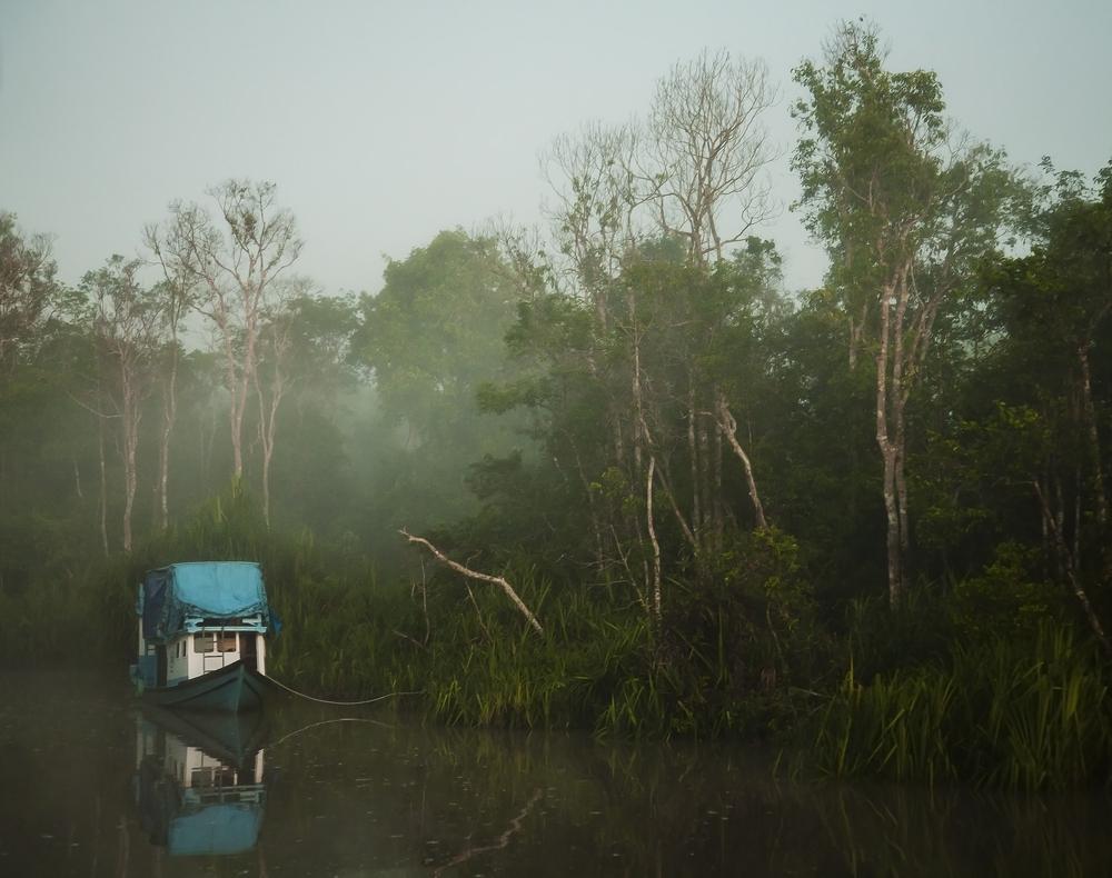 Sunrise on the Sekonyer River | ©JMcurto/Shutterstock